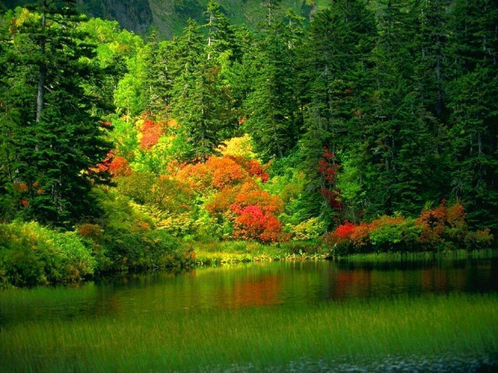 Romantik Manzara resimleri, temalarınız için manzara resimle