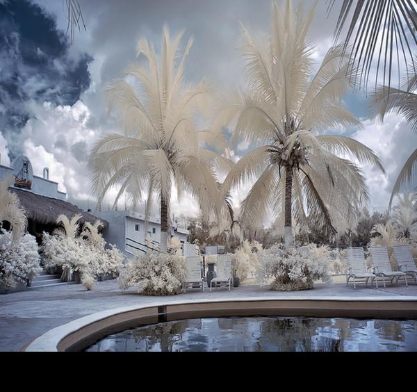 Mes tubes paysage d'Hivers en transparence !!
