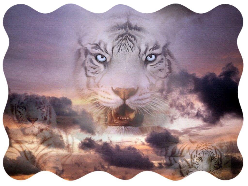 Tigres page 5 for Le plus beau canape du monde